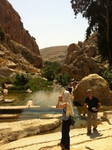 Pool in the Negev, Wadi Qelt