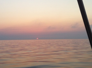 A pink dawn