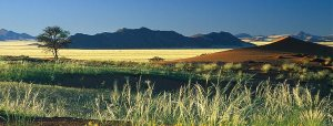 banner-the-ultimate-namibia-safari-1
