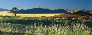 banner-the-ultimate-namibia-safari-1